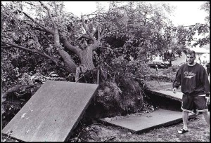 Many large trees were uprooted and fell on houses during the tornado. It took weeks to clear the mess and repair household roofs.