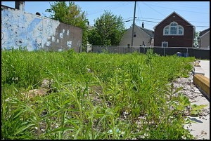 City Councilmember Anam Miah is calling for an investigation into the sale of a city-owned lot on Caniff to a local developer without going through a public auction.