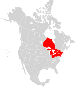 A map of the area that suffered a power blackout in 2003.